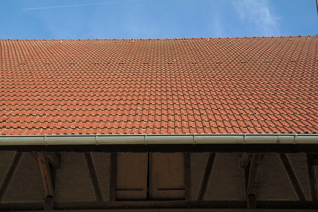 rynny i dach
